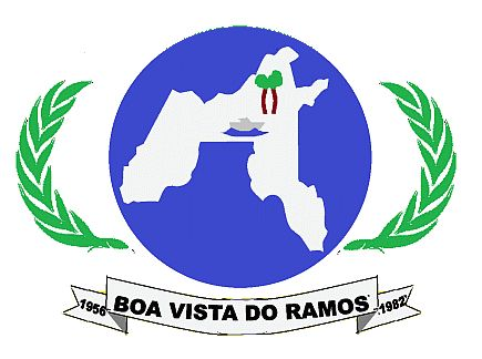 Foto da Cidade de Boa Vista do Ramos - AM