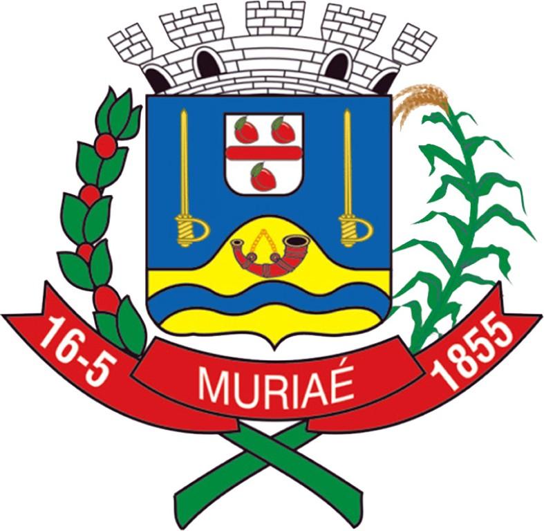 Foto da Cidade de Muriaé - MG