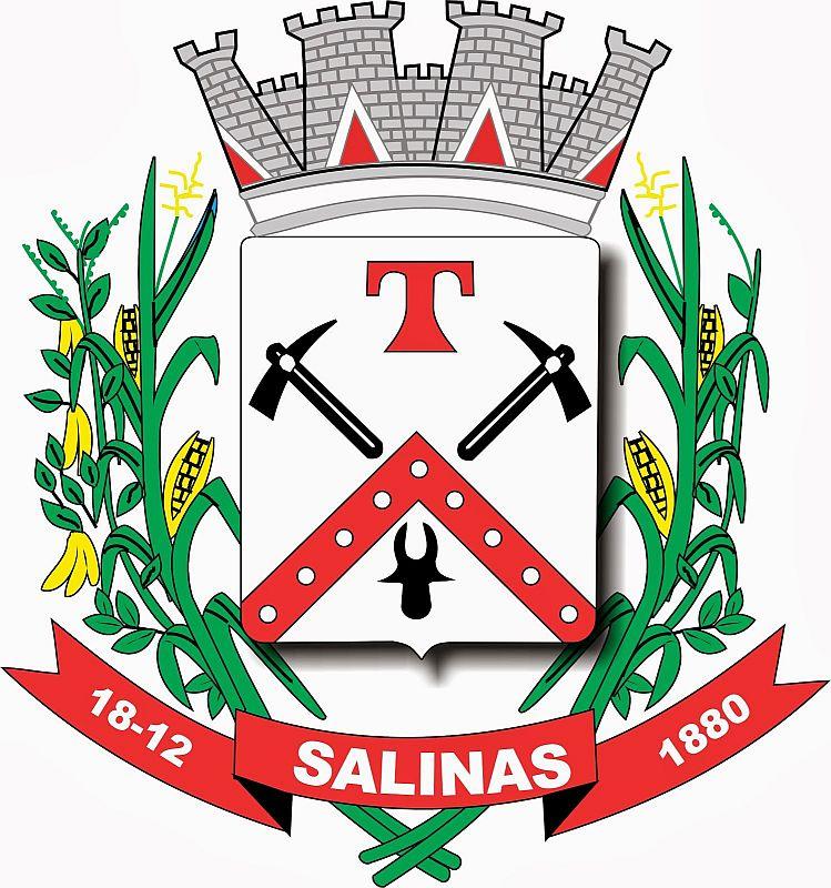 Foto da Cidade de Salinas - MG