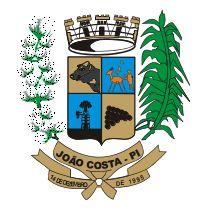 Foto da Cidade de João Costa - PI
