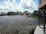 Foto da Cidade de CODAJAS - AM