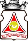 Foto da Cidade de Caranaíba - MG