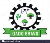 Foto da Cidade de GADO BRAVO - PB