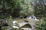 Foto da Cidade de Agudos do Sul - PR