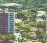 Foto da cidade de Nova Londrina