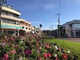 Foto da Cidade de Três de Maio - RS