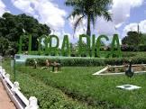Foto da Cidade de Flora Rica - SP
