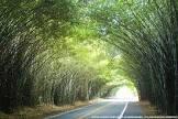 Foto da cidade de Morungaba