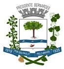 Foto da cidade de Presidente Bernardes