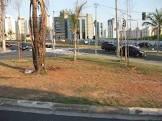 Foto da cidade de Regente Feijó